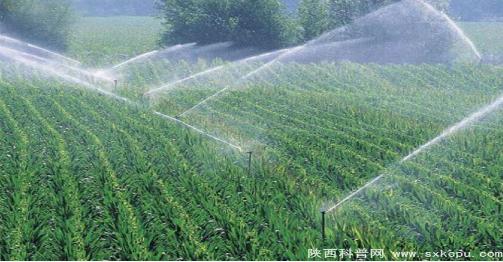 灌溉农田的四大节水方法
